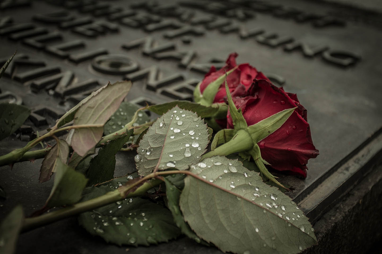 Auschwitz Birkenau concentration Camp memorial / Konzentrationslager Denkmal Rose