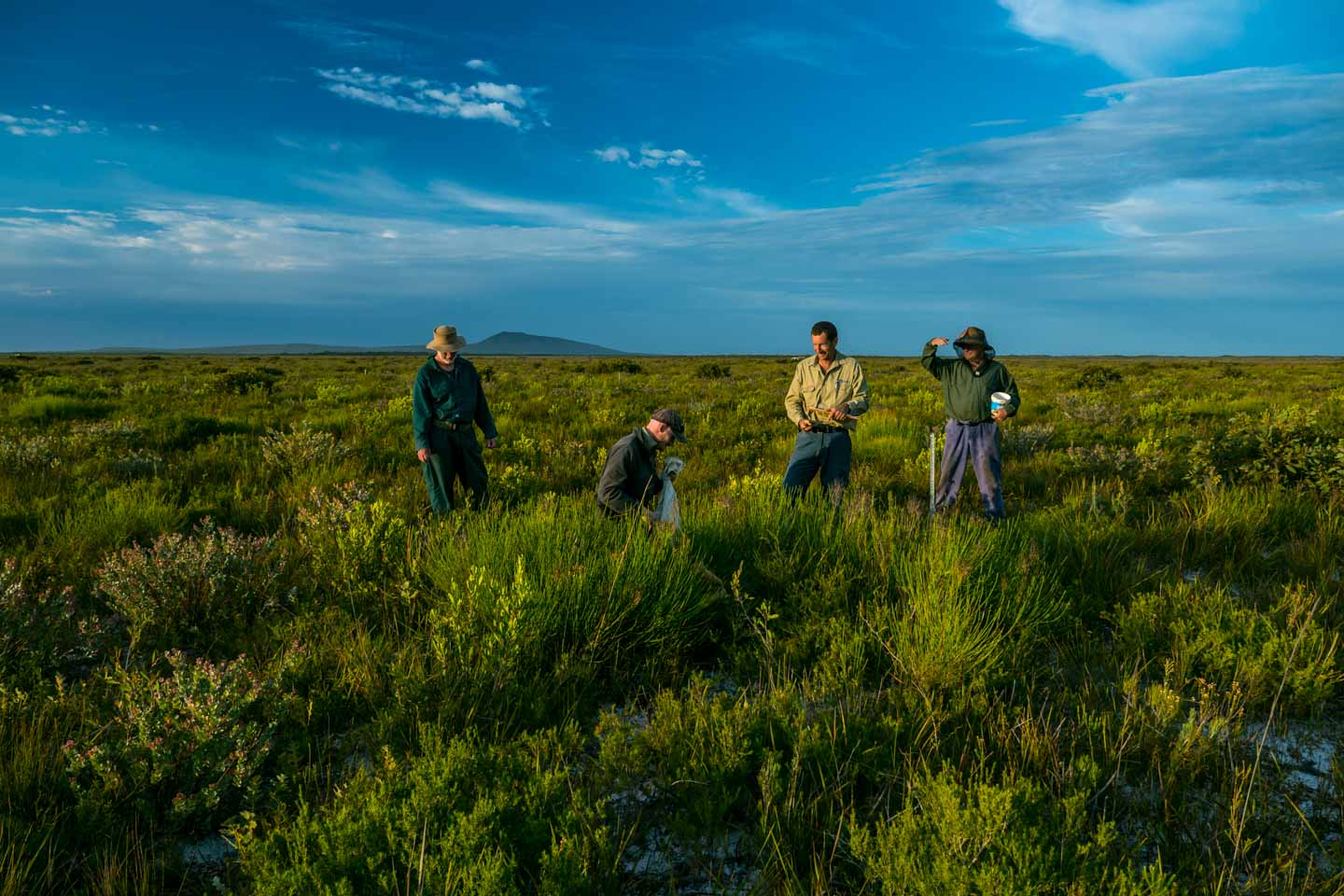 Scientists and researchers in Cape Arid National Park volunteering for Parks and Wildlife Western Australia