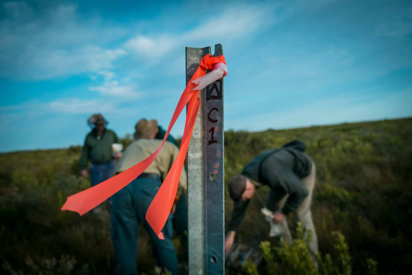 Research field trip in Cape Arid National Park by Parks and Wildlife Western Australia