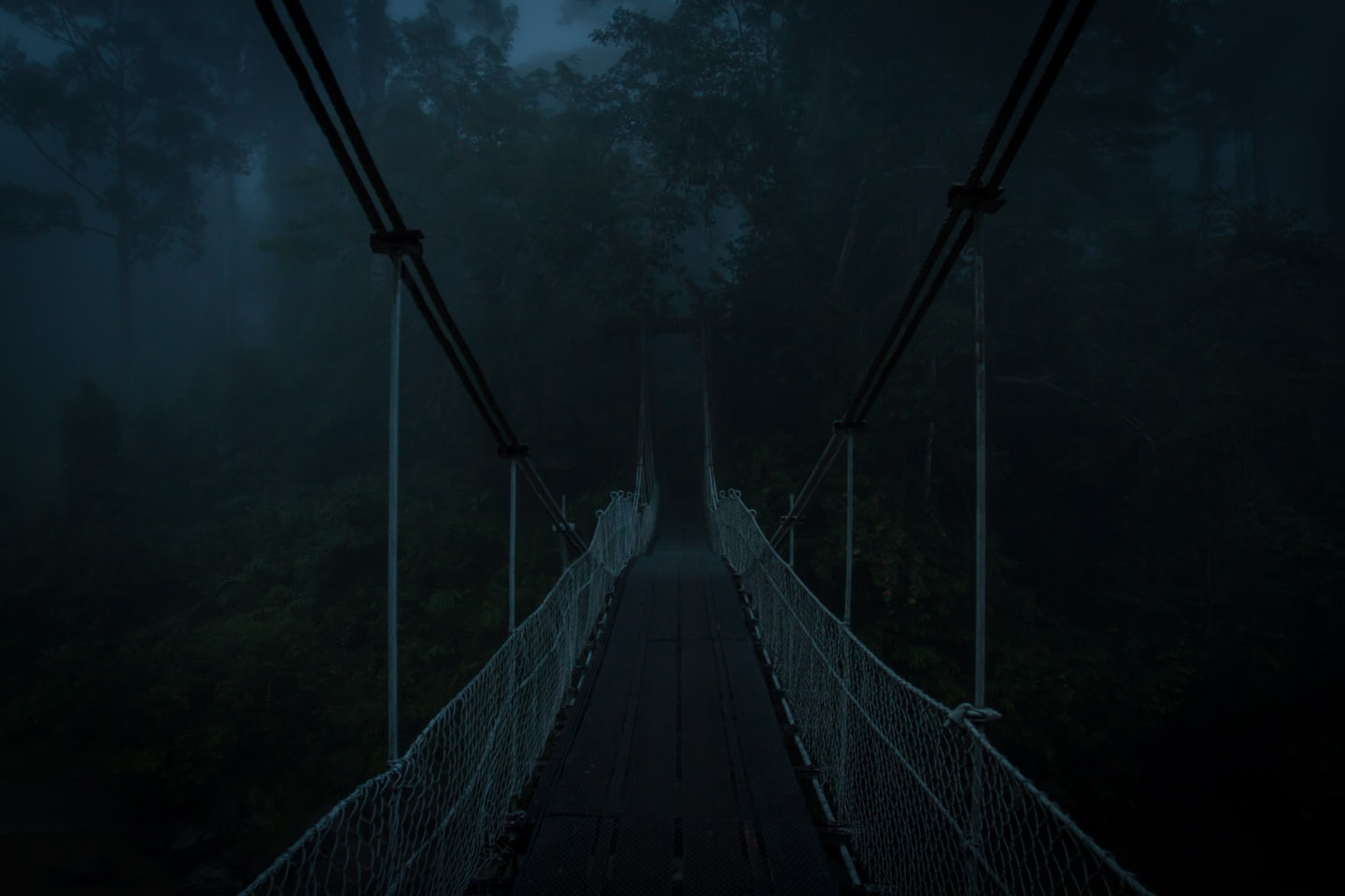 Suspension bridge Danum Valley Field Center Conservation Area Sabah Borneo Malaysia