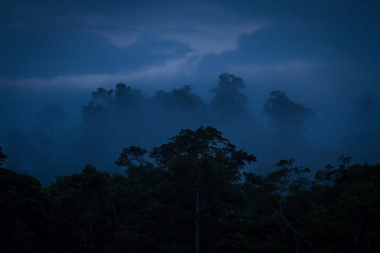 Sukau Evergreen Lodge Kinabatangan River Sabah Borneo Malaysia