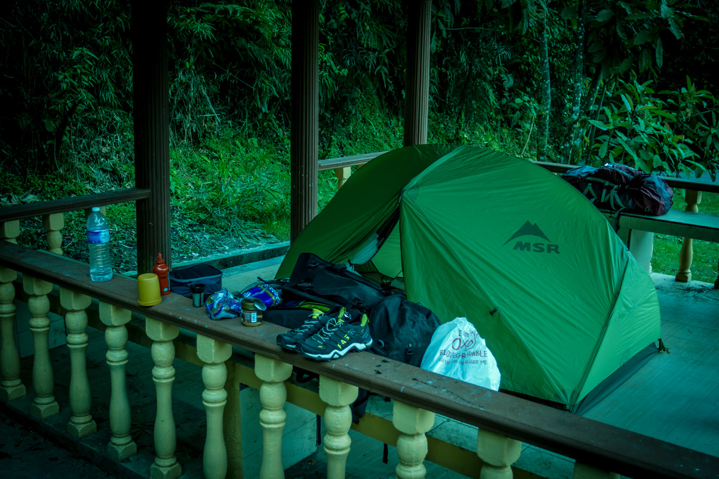 Camping with tent at Mossy Forest Mount Gunung Batu Brinchang