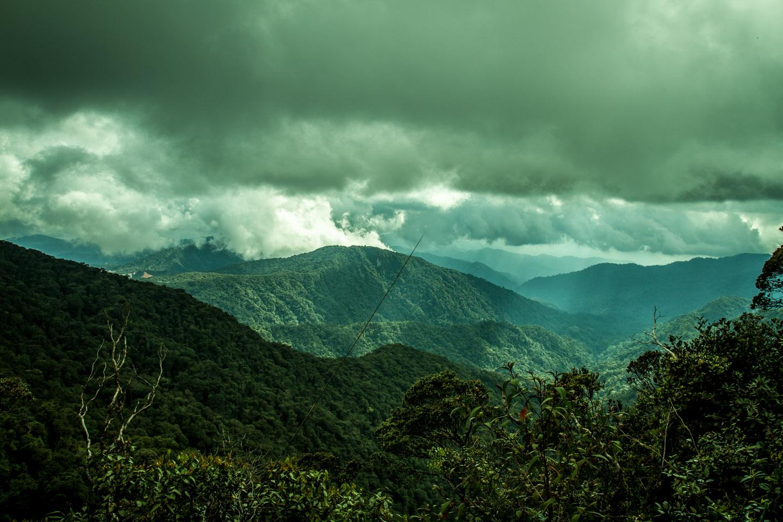 Stunning great view into the Mossy Forest Mount Gunung Batu Brinchang