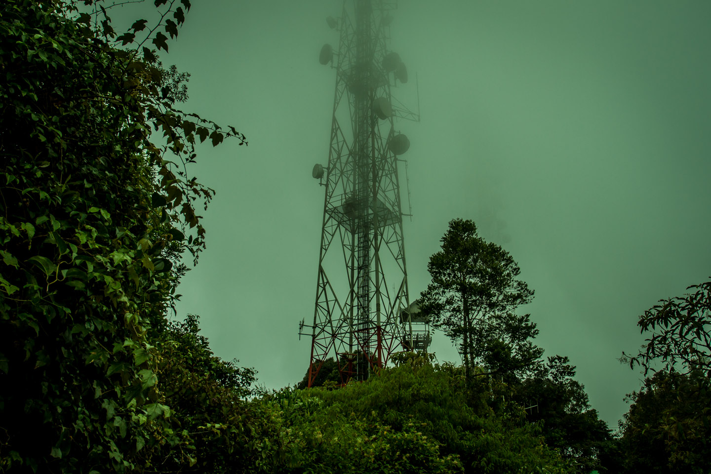 Satellite dishes and communication tower at Mossy Forest Mount Gunung Batu Brinchang