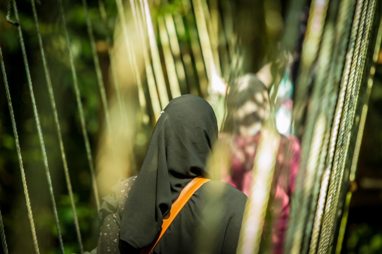 Poring Hot Spring canopy walk Sabah Borneo Malaysia