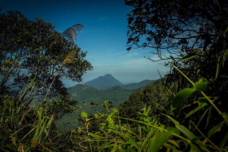 Walking track around Mount Kinabalu Park Sabah Borneo Malaysia