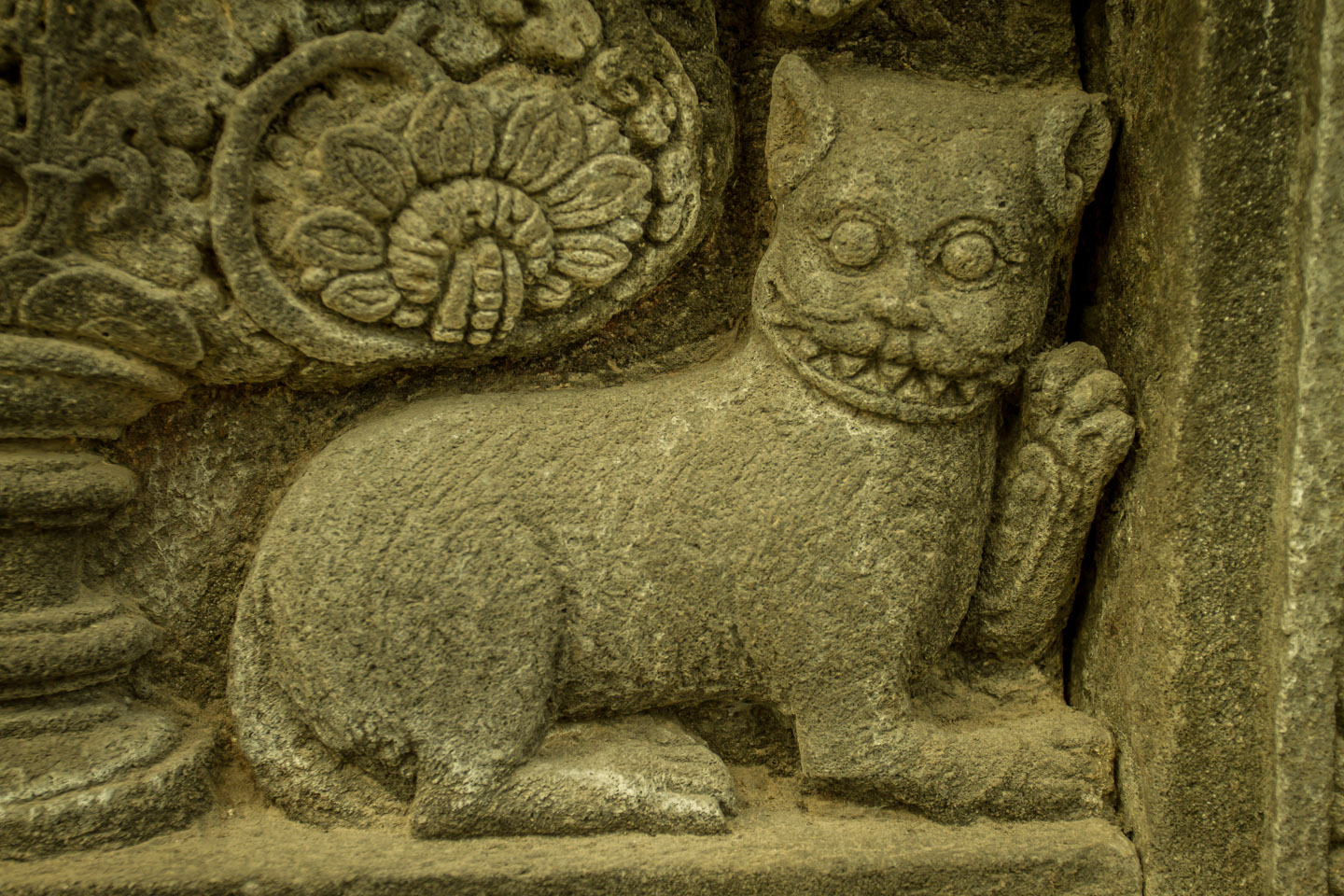 Little cat carved in stone at Prambanan Hindu Temple Java