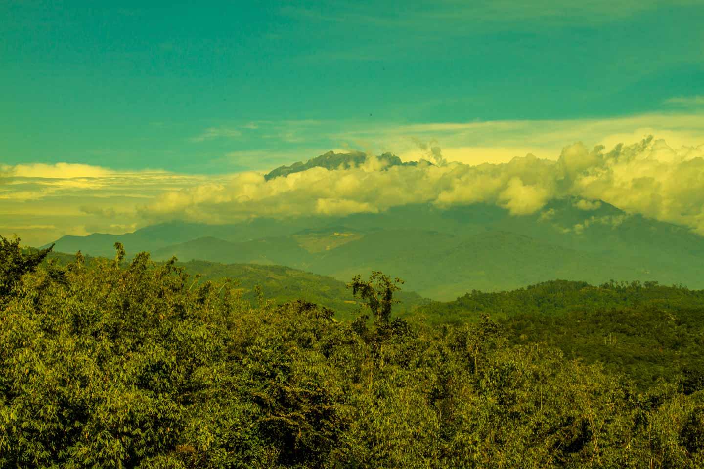 Mount Kinabalu looking from the Sabah Tea Garden Plantation Borneo Malaysia