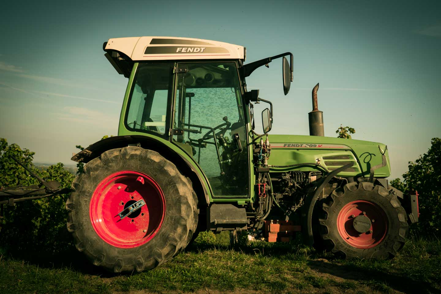 Tractor for wine harvest in the vineyards Oppenheim 2015