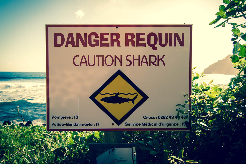 La Réunion Shark fatal Attack Killing Surfer / Töten Angriff Hai Haiangriff La Reunion tödliche Unfall